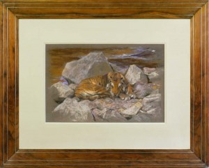 ARTHUR WARDLE A tiger resting amongst rocks